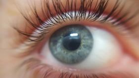 eye-2153580_1920.jpg